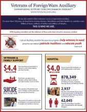 VFW Auxiliary Facts Leaflet 2016-2017
